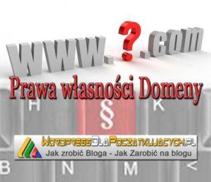 prawa-własnosci-domeny