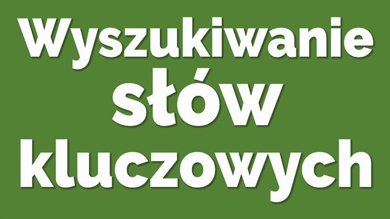 wyszukiwanie-slow-kluczowych-wordpress-dla-poczatkujacych