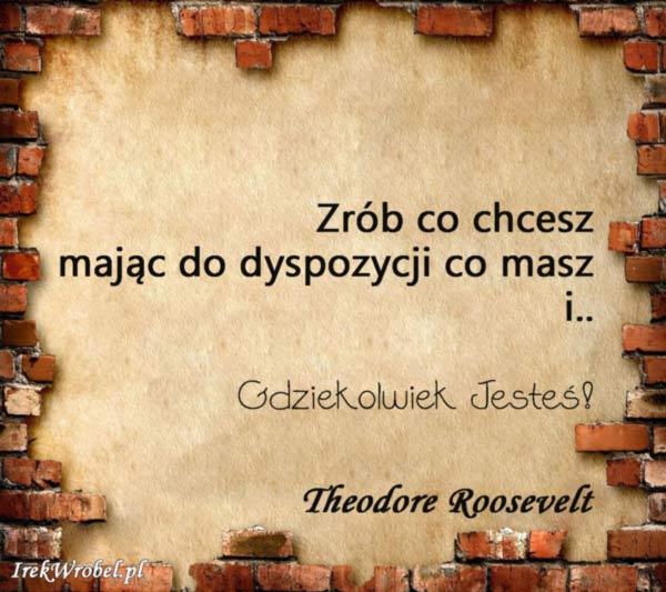 09-Zrob-co-chcesz-majac-do-dyspozycji-co-masz-i-gdziekolwiek-jestes-irekwrobel-pl