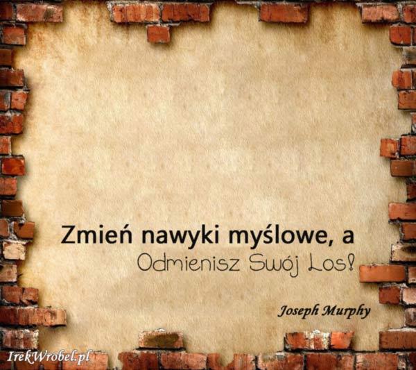 18-Zmien-nawyki-myslowe-a-odmienisz-swoj-los-irekwrobel-pl