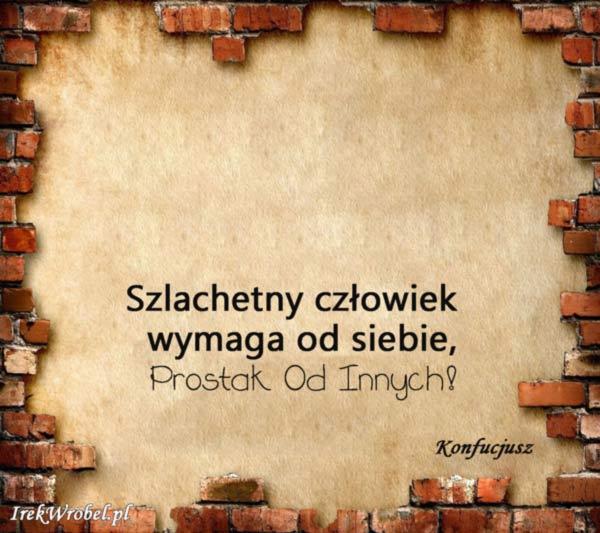 22-Szlachetny-czlowiek-wymaga-od-siebie-prostak-od-innych-irekwrobel-pl