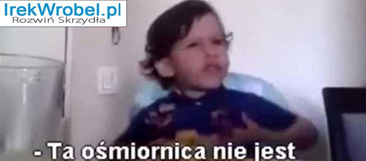 Osmiornica-Madry-chlopiec-irek-wrobel