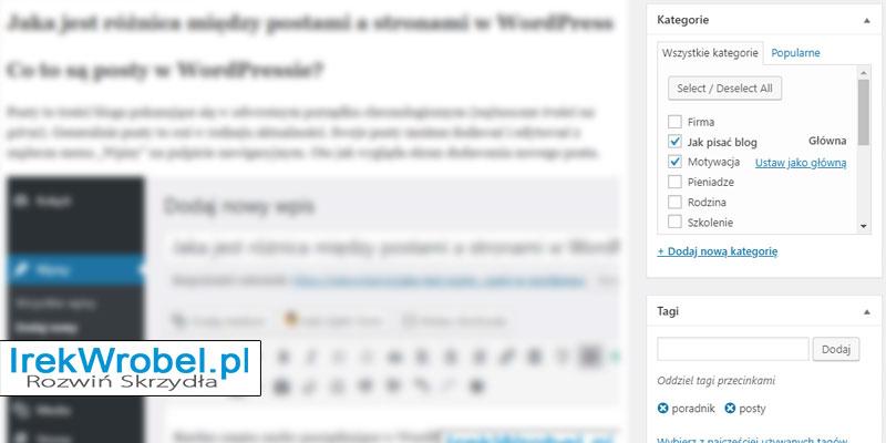 jaka-jest-roznica-miedzy-postami-a-stronami-w-WordPress-