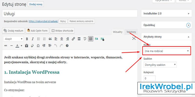 jaka-jest-roznica-miedzy-postami-a-stronami-w-WordPress-3