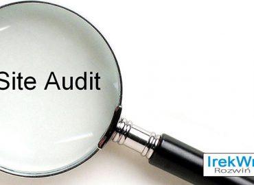 side-audit